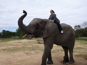 Sitting on an elephat